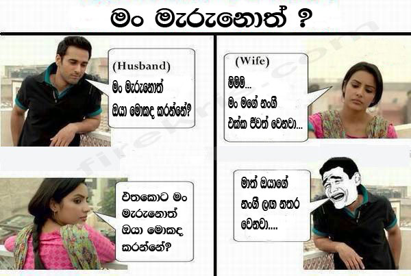 I Love You in Sinhala & 7 More Romantic Lines to Annoy