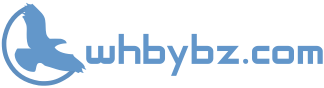 whbybz.com