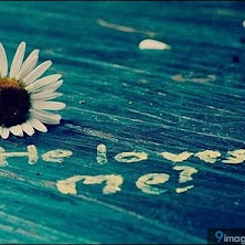 flower, art, quotes, awesome