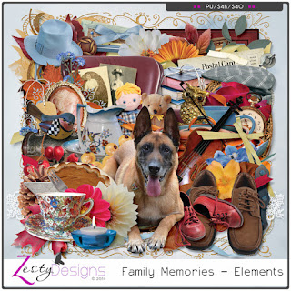 http://www.digitalscrapbookingstudio.com/collections/coordinated-collections/family/?features_hash=13-40
