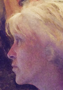 Cliquer sur l'image pour les blogs Hélène Larrivé