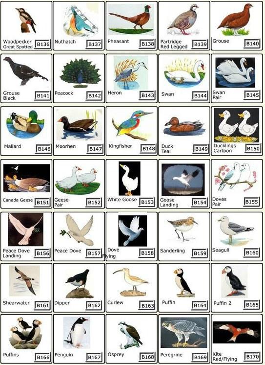 Bird House Signs