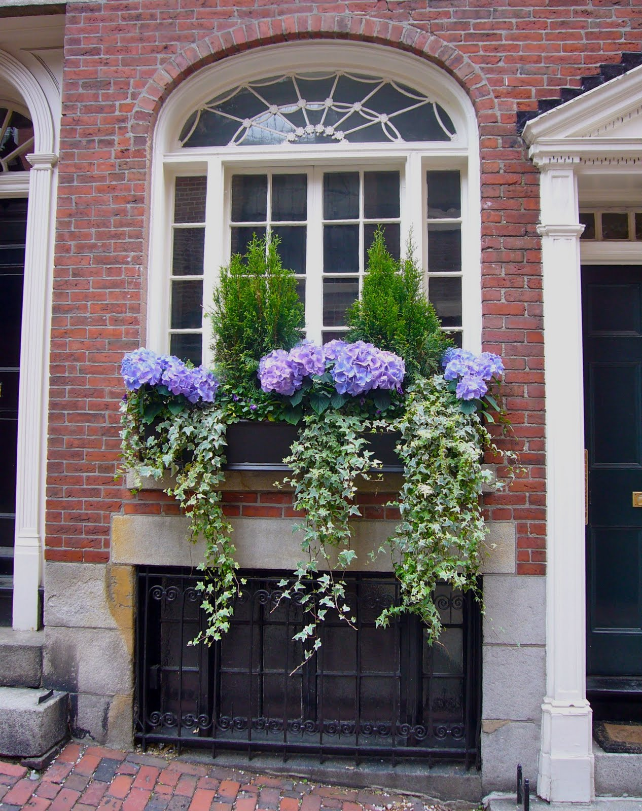 a proper bostonian beacon hill window boxes. Black Bedroom Furniture Sets. Home Design Ideas
