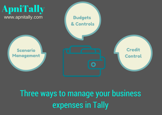 Three ways you can manage your small business expenses in Tally erp 9