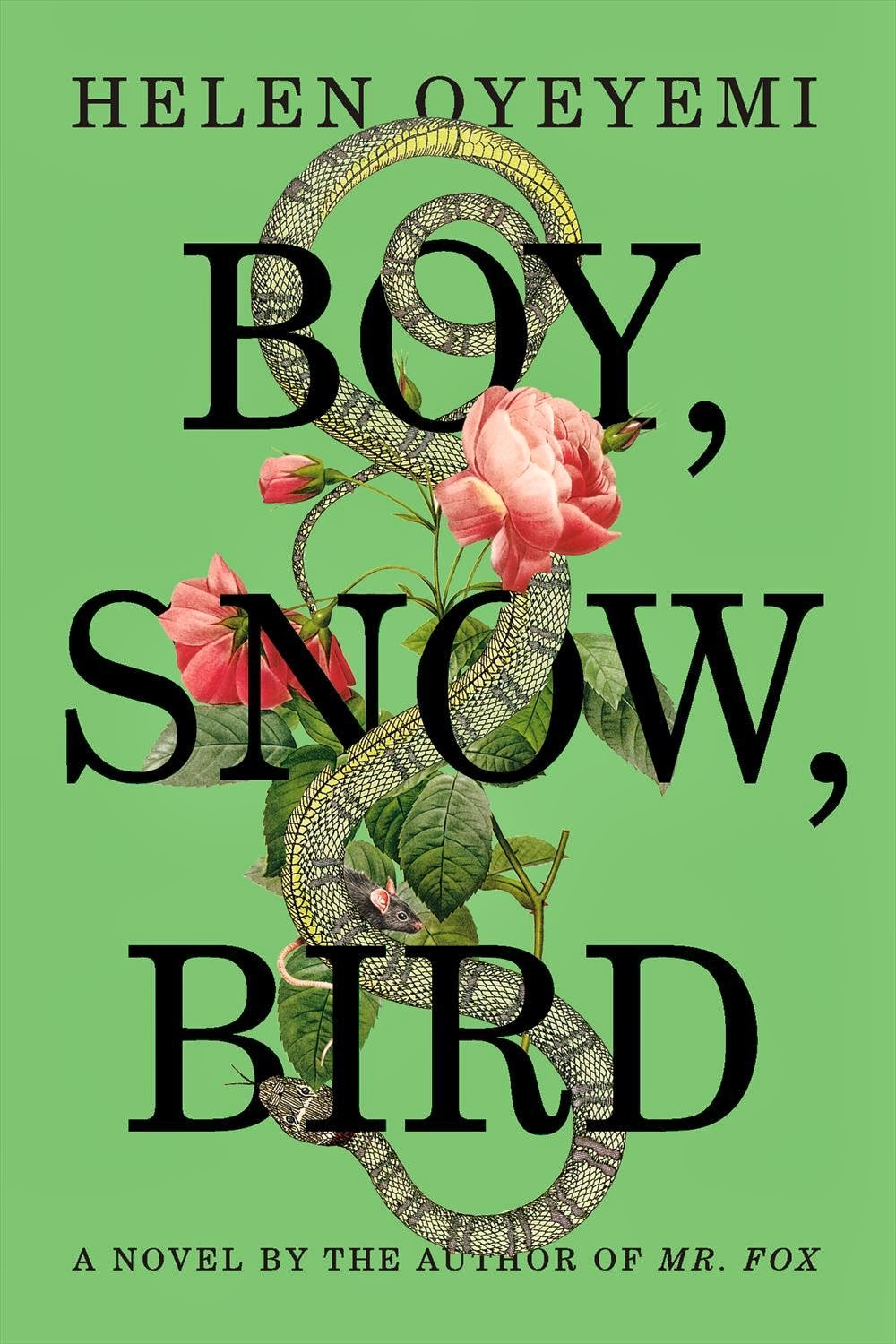 http://discover.halifaxpubliclibraries.ca/?q=title:%22boy%20snow%20bird%22