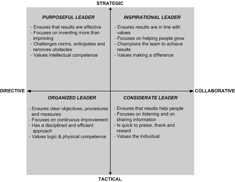 Insights For Executives What Is Your Leadership Style Self