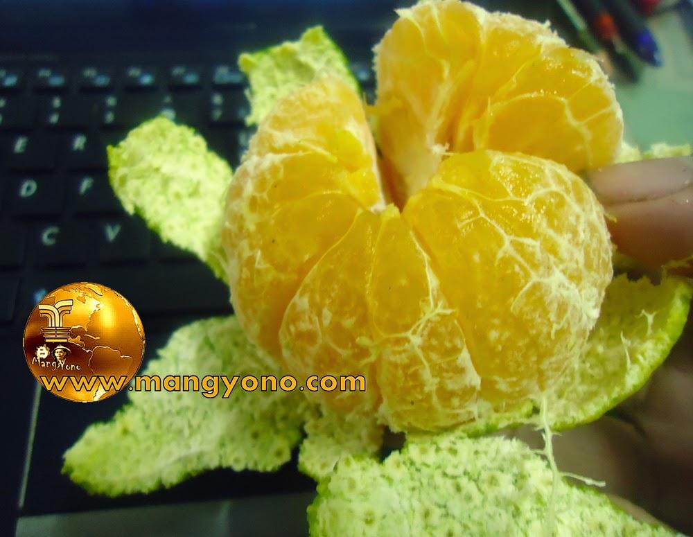 Manfaat buah jeruk bagi tubuh kita