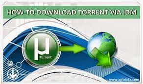 IDM Internet Download Manager 6.21 Build