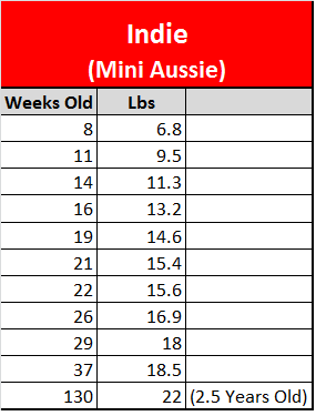 Buying clothing when on holidays can sometimes be confusing as sizes seem to vary so much from place to place. The following chart will help you to find out what Australian size is .