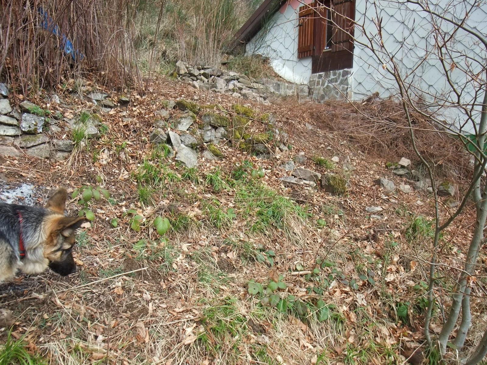 Mother Earth News Vegetable Garden Planner - Making on the Mountain