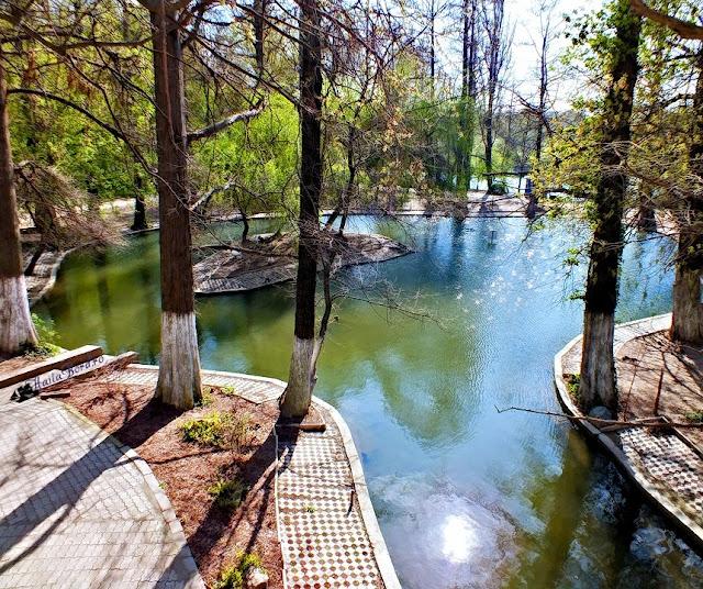 lac parcul carol aprilie 2013