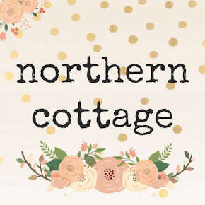 {the Northern Cottage Shop ♥}