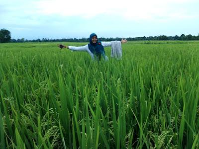 Wisata BBI kec Pekalongan Lampung timur