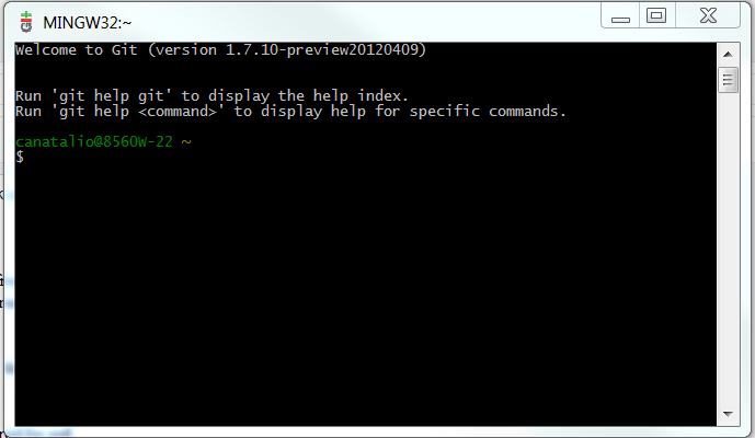 Your git bash command prompt