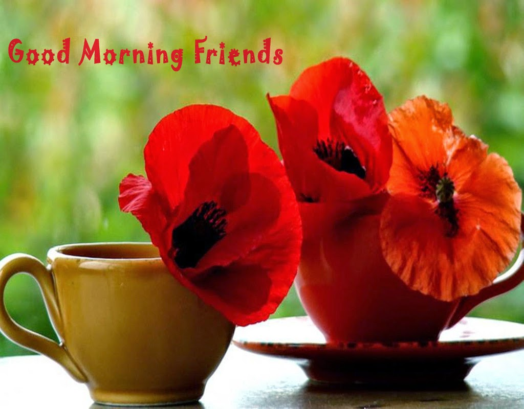 Good Morning Sms And Messages With Coffee Flower Wallpapers Poetry