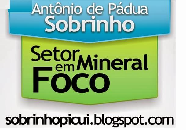 SETOR MINERAL EM FOCO