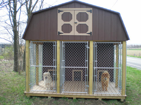 Billy easy wooden kennel plans wood plans us uk ca for Indoor outdoor dog kennel design