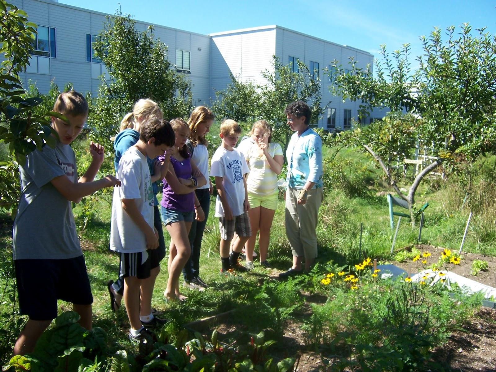 Fms Wellness Blog Farm 2 School Activity In Health Class