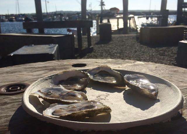 Oysters in Menemsha