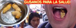 GUSANOS DE LA AMAZONIA - MEDICINA ANCESTRAL