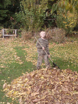 Autumn Clean Up