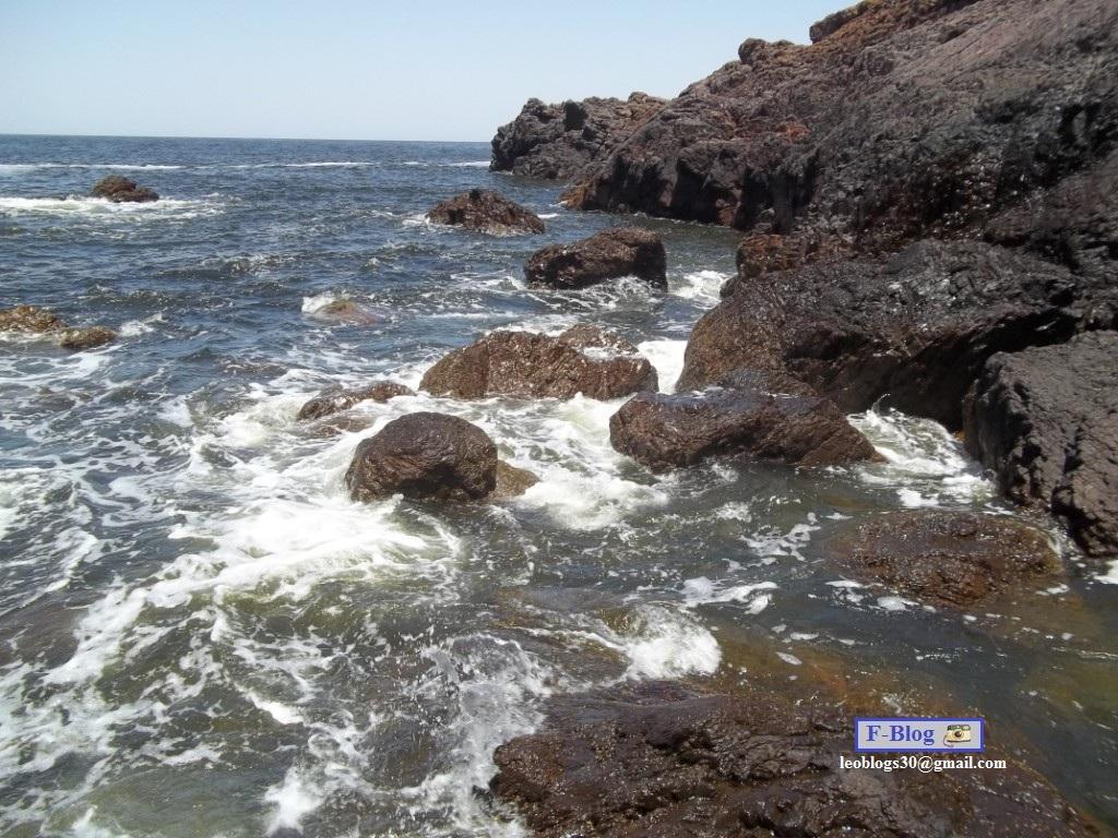 Punta del Este - Mar Punta Ballenas