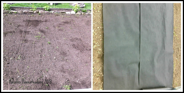 square foot gardening setup