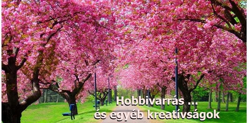 Hobbivarrás ...