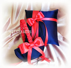 Navy blue and coral basket and pillow