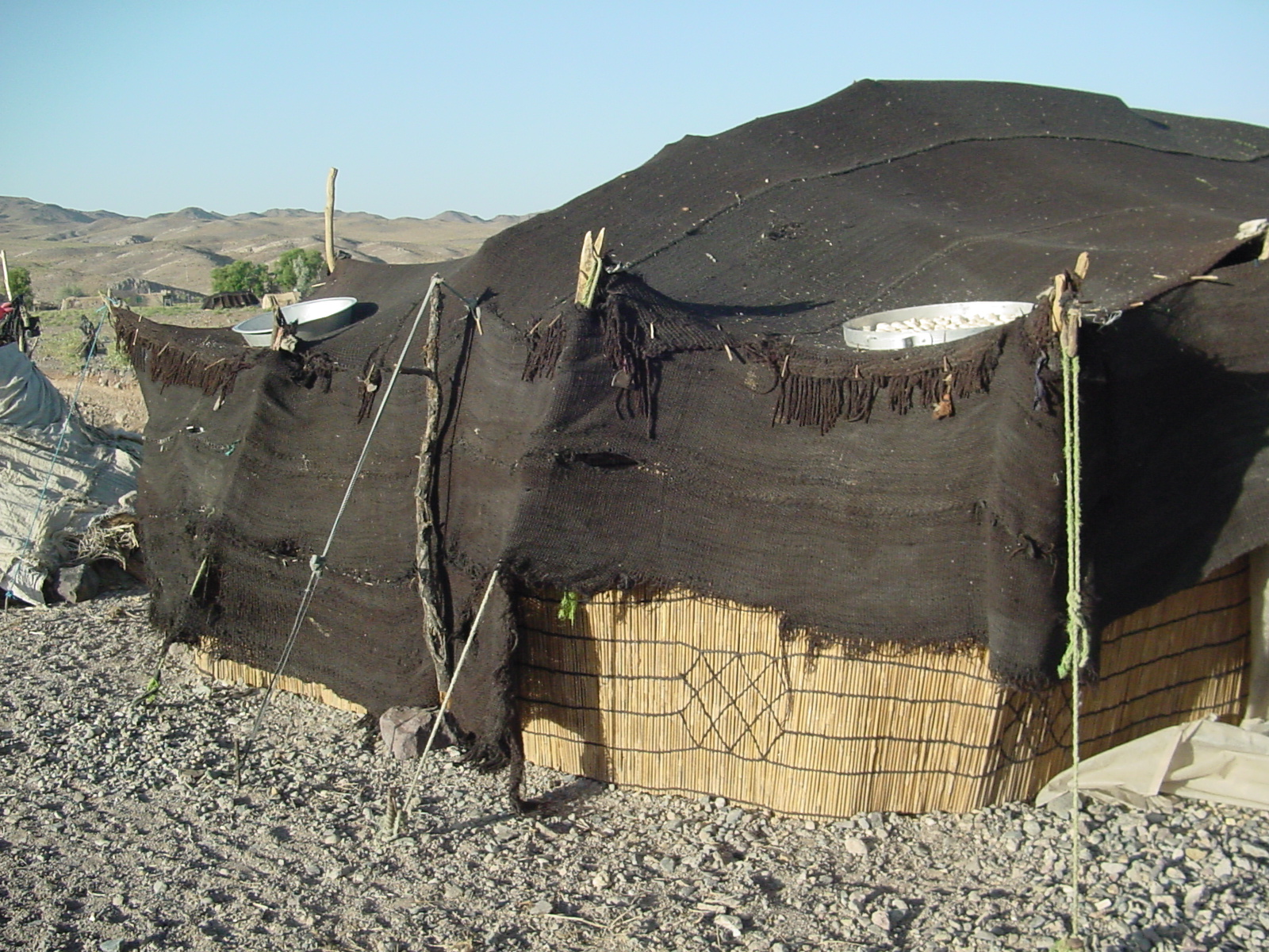 10x20 Ez Pop Up Gazebo Canopy Party Tent - Black - Prices, Reviews