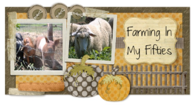 Farming In My Fifties