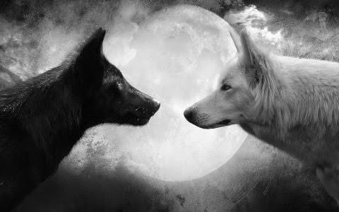 Guardianes de la luna