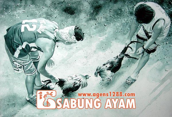 Hasil Pertandingan Arena AR2 Sabung Ayam S1228.net 10 November 2015