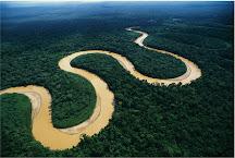 Internacionalización de la Amazonia?
