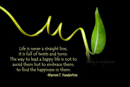 my life has many twist and turns Enjoy our twists and turns quotes collection best twists and turns quotes selected by thousands of our users  life can take so many twists and turns.