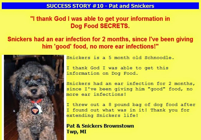 A reveal of andrew lewis book dog biscuits just want to ask you one question if you really like your dogs like real dog lovers do what prevents you not to buy this ebook and extend your dog life fandeluxe PDF
