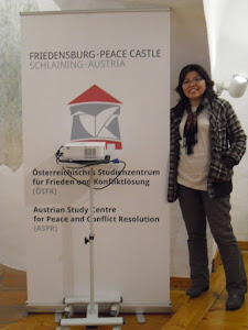 International Peace Building Training, Austria