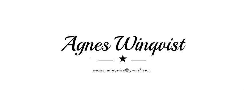 Agnes Winqvist - Blogg