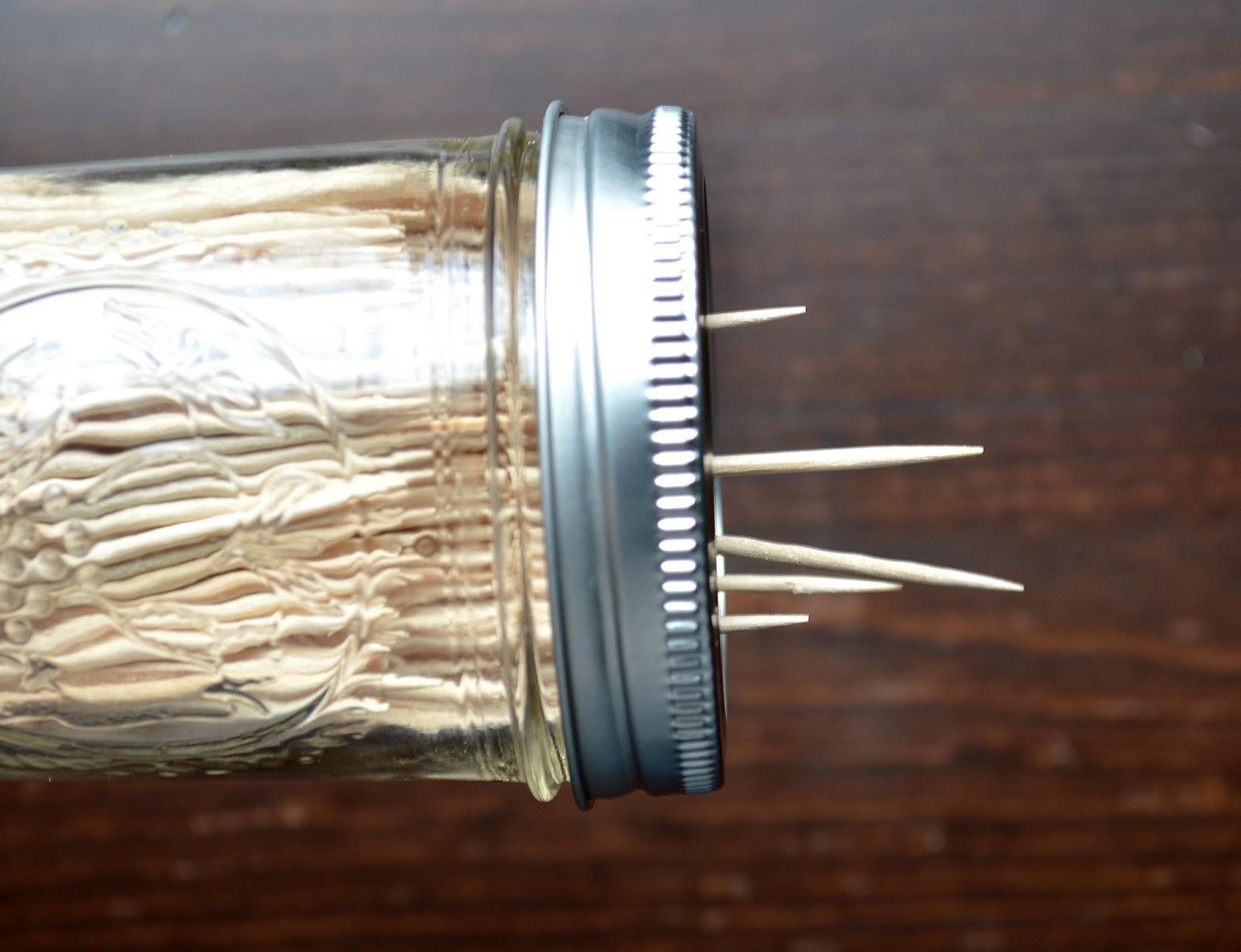 Diy+toothpick+dispenser