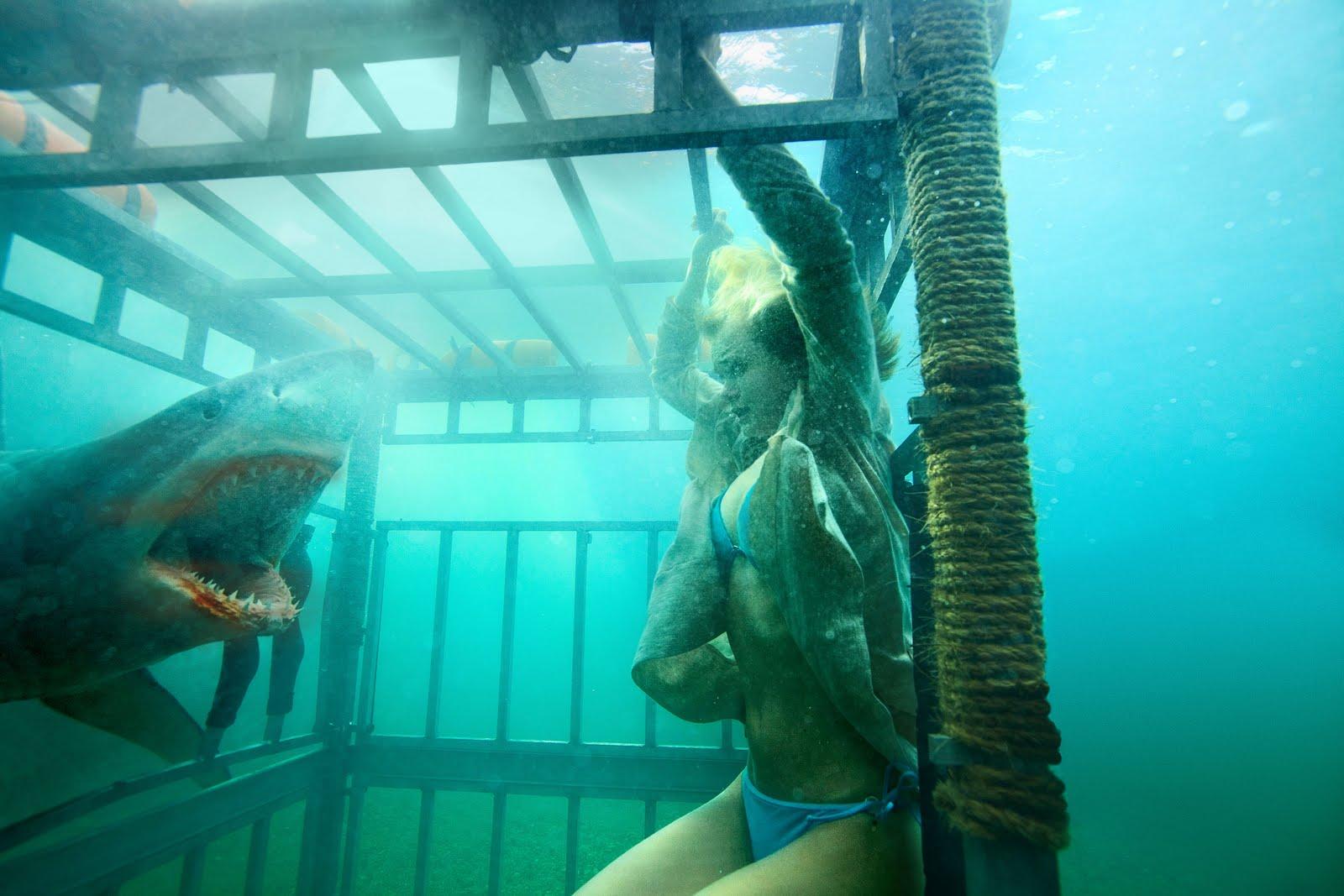 movie shark porn Cringe lifeguard scene goes viral | Daily.