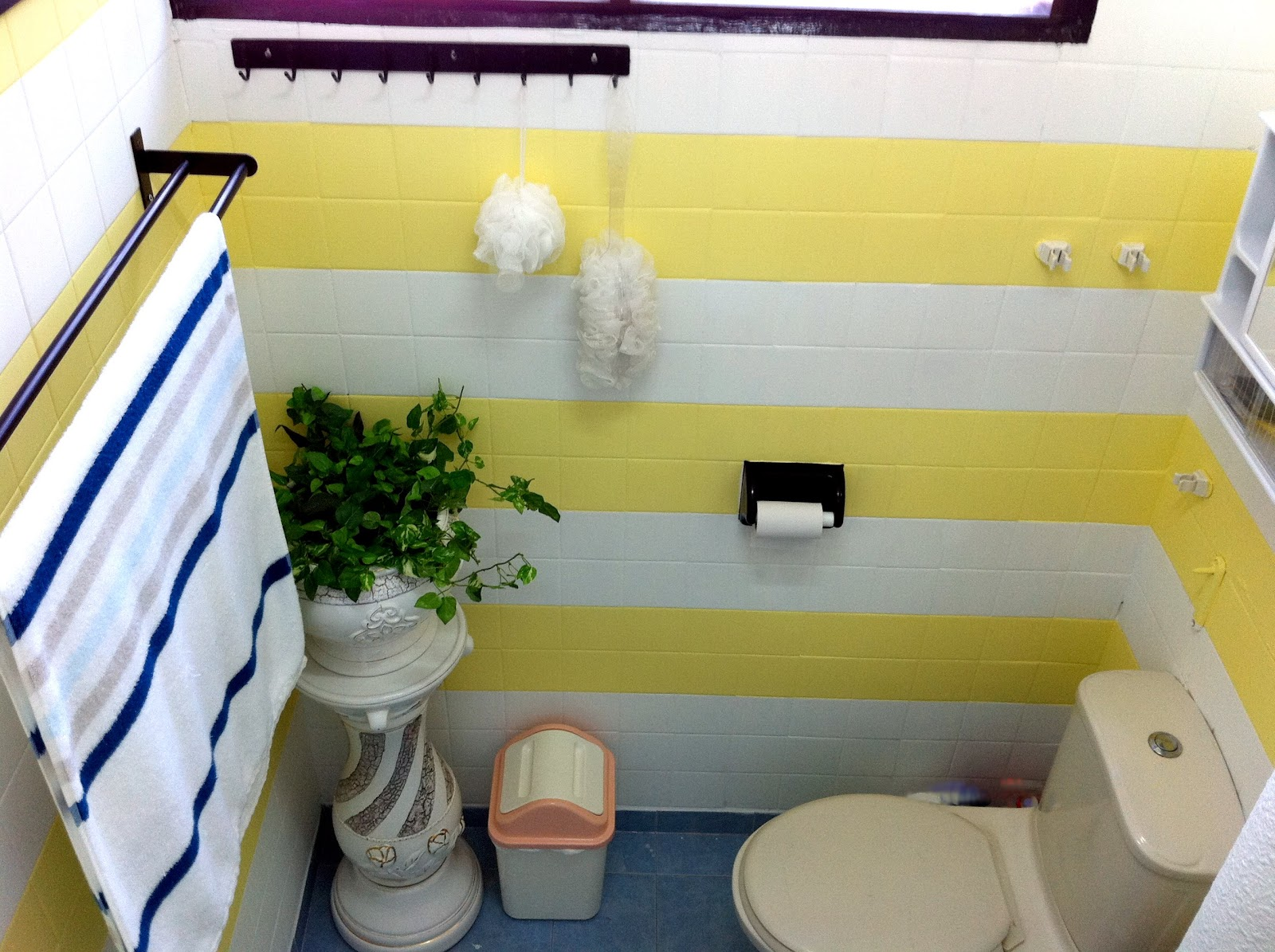 Bathroom/Toilet Make-Over : Before and After – Pursuit of Functional ...