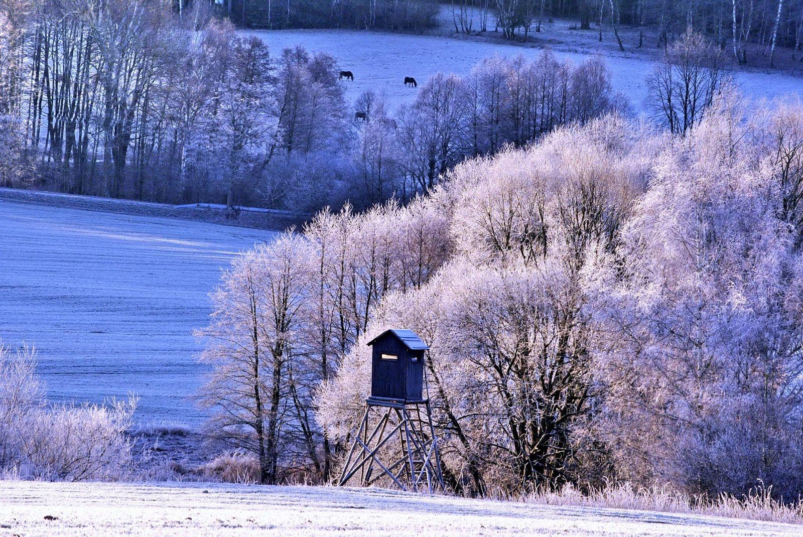 Zima v krajině