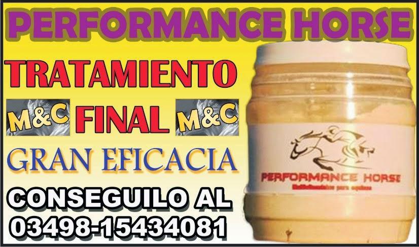 PERFORMANCE HORSE