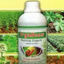 Pengendalian Hama dan Penyakit Dengan Pestisida Organik