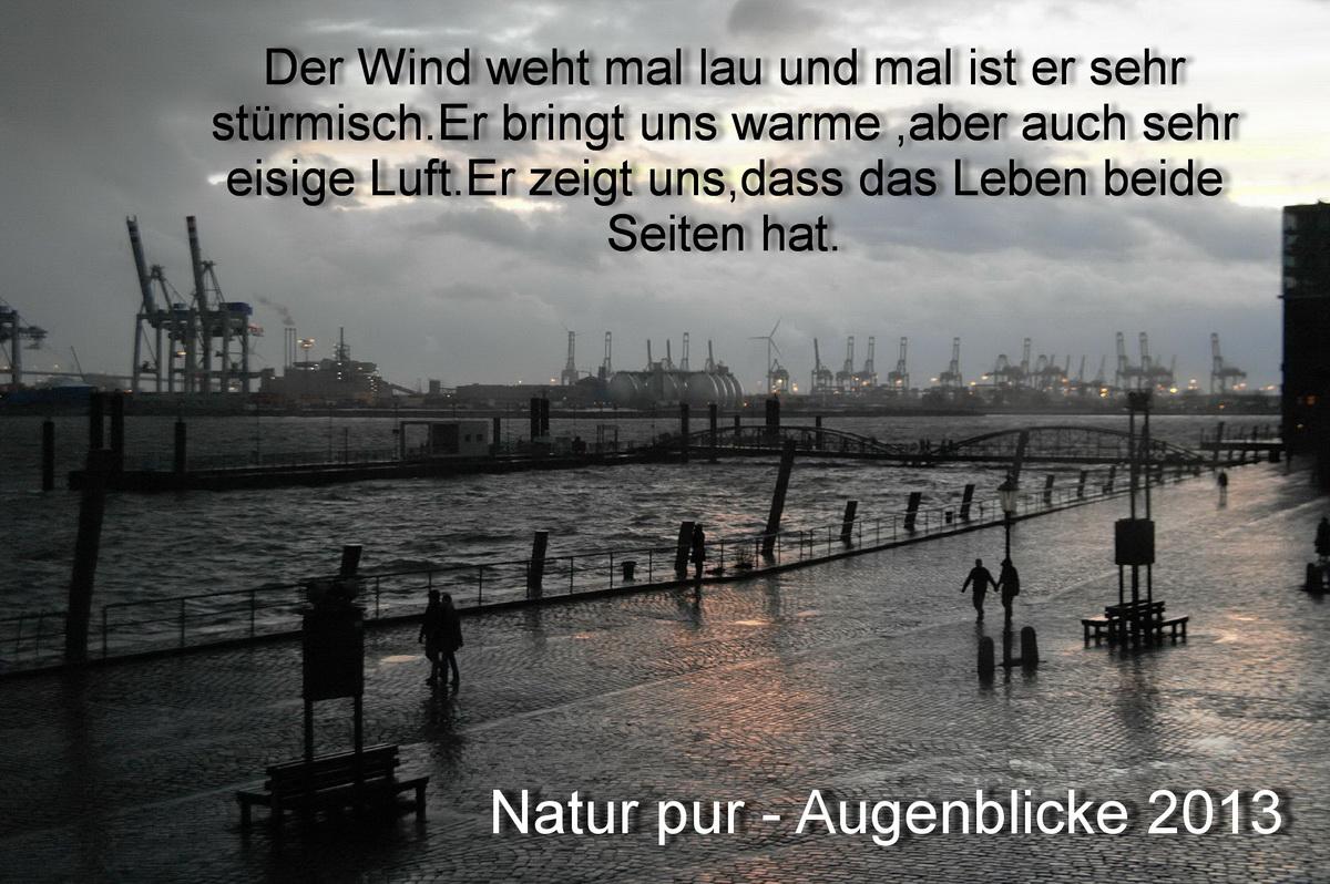 Natur pur - Augenblicke 2013