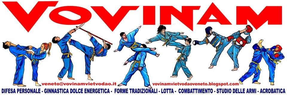 Vovinam Viet Vo Dao Veneto
