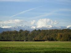 ANOSS - Sez. Emilia Romagna