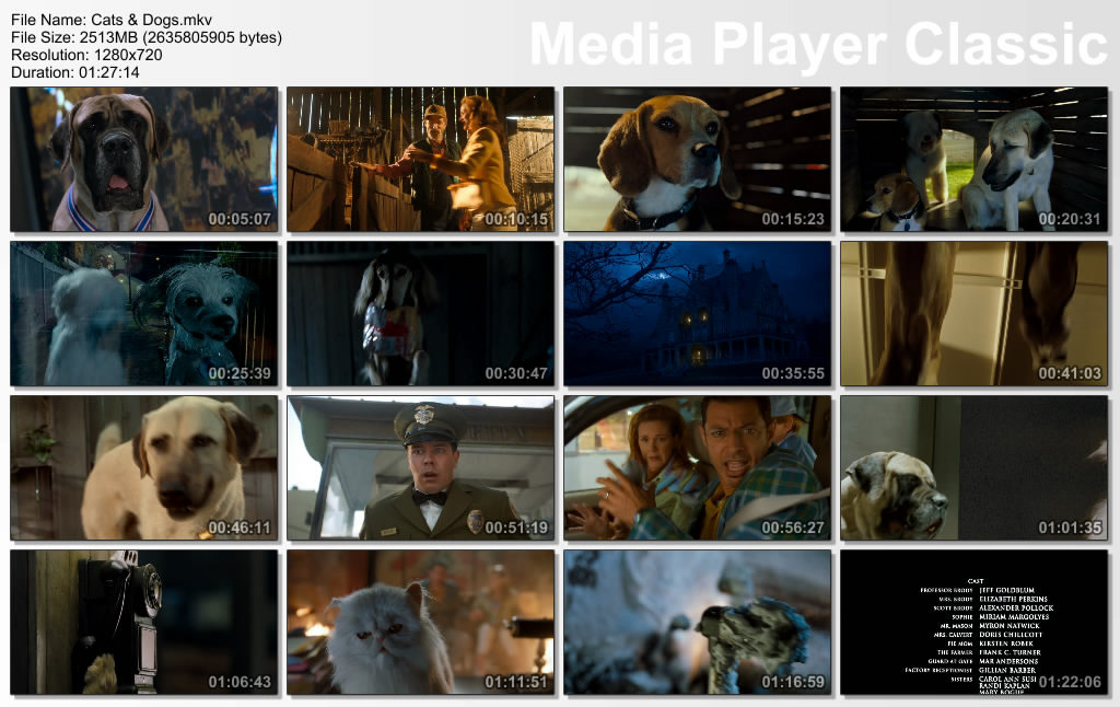 Cats And Dogs Similar Movies