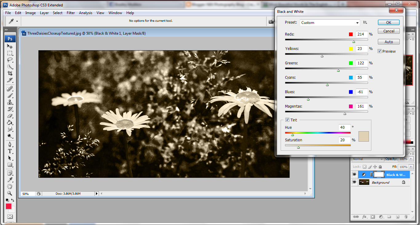 how to make a layer in photoshop black and white