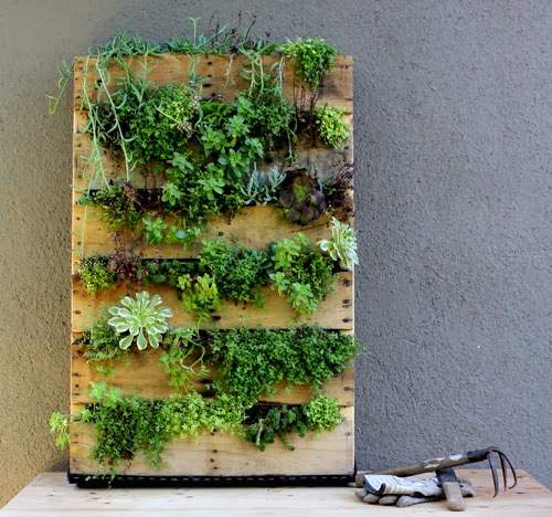 diy jardines verticales